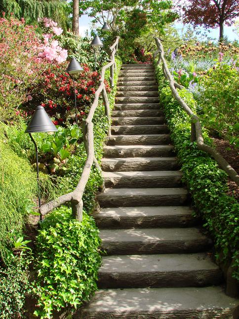 garden stairs by seansbizz