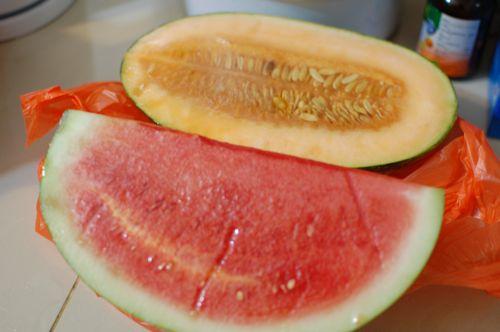 Rock melon and watermelon