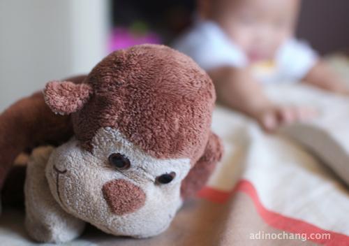 monkey chang
