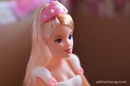 2012 may 02 rachel birthday princess cake