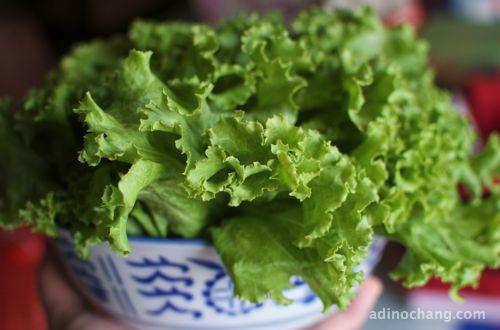 2012 may 08 lettuce
